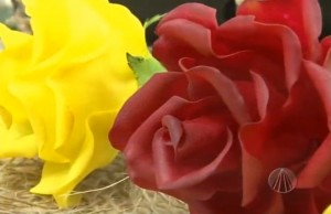 rosas-feitas-com-biscuit-alessandra-assi