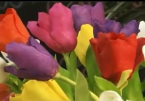 botões-de-tulipas-de-biscuit-alessandra-assi