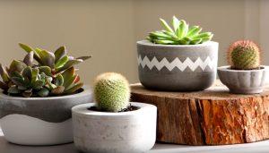 como fazer vasos de cimento em casa artesanato passo a passo