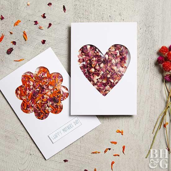 cartão com ervas aromáticas